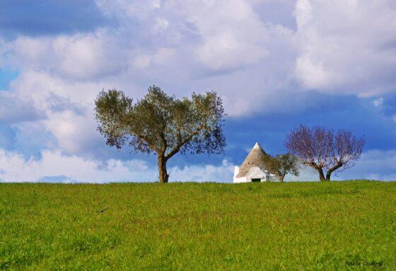 Valle d'Itria przenieś się domagicznej krainy domków trulli