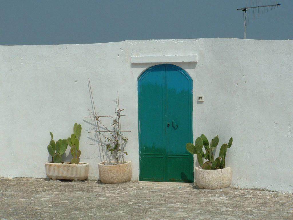 kaktusy, Valle d'Itria przenieś sie domagicznej krainy domków trulli