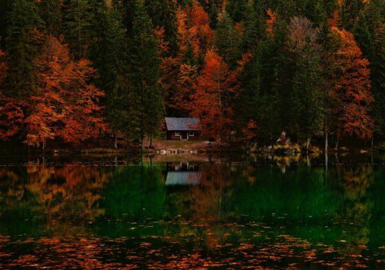 10 powodów dlaczego warto pojechać doWłoch jesienią